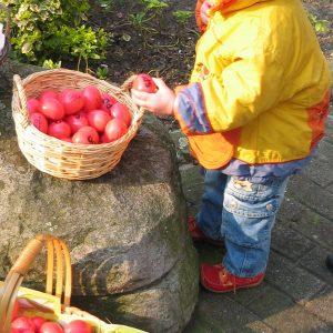 Der kleine Ostergruß der Versmolder SPD